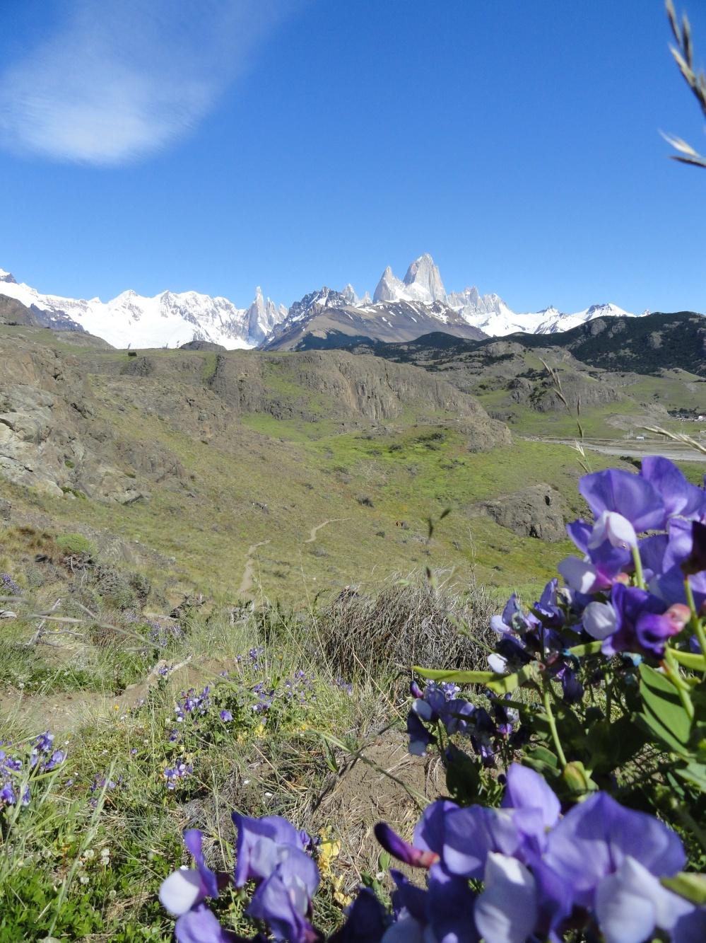 Spring in El Chalten, Patagonia, Argentina