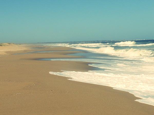 beach-la-rocha