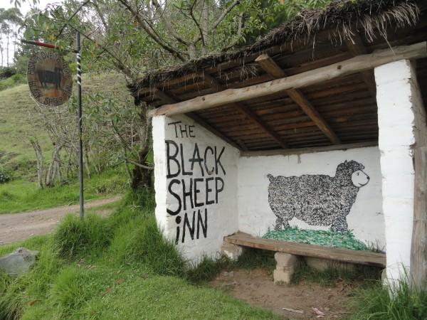 black-sheep-inn-ecuador