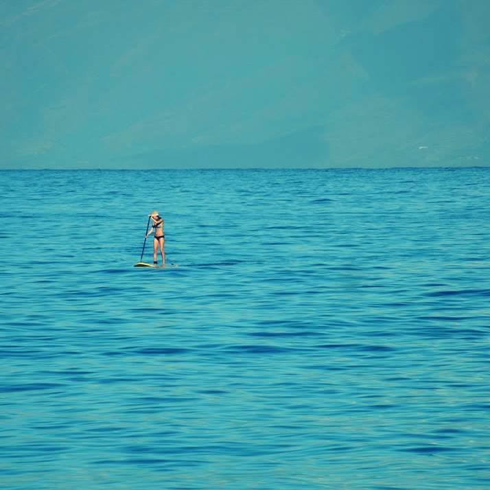 paddle-board-maui
